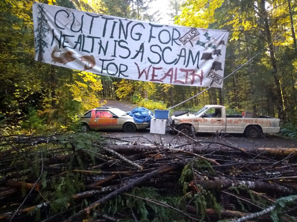 CFD Press Releases: Logging at Goose Timber Sale