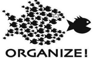 Community Organizing 101 Workshop